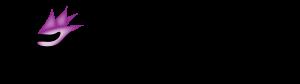 oseyt-logo-transparent-background-2-01